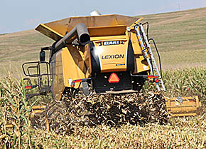 Bryce Naber was harvesting high moisture corn in a field north of Albion last Friday.