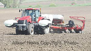 Planting operation nar Albion.