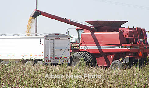 Combine unloads soybeans into a semi trailer south of Albion.